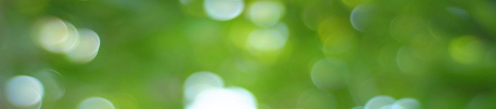 EnergyGO - Tarifas 100% verdes para pagar menos en tu factura de la luz